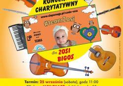 Na zdjęciu plakat Koncertu charytatywnego dla Zosi Bigos. na plakacie instrumenty muzyczne (grafika) i zdjęcie Zosi